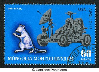 Rat and apollo