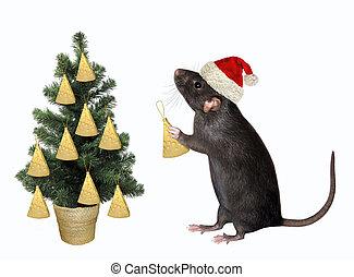 Rat decorating Christmas tree 2