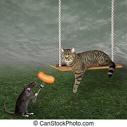 Rat feeding cat on swing 2