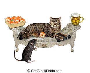 Rat feeds cat sushi 2