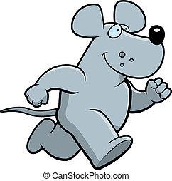 Rat Running