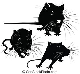 rat silhouette vector collection isolated on white background