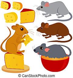 rata, ratón, y queso