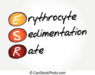 rate, begriff, erythrozyt, akronym, medizin, sedimentation, esr, -