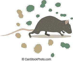 rato, arte, animal, clip