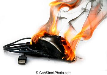 rato computador, queimadura