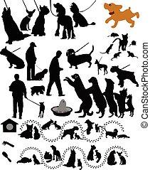 rato, gatos, animais, cachorros