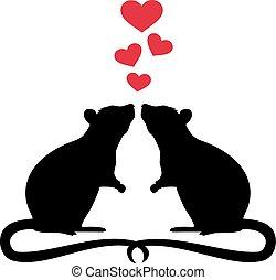 ratos, amor, dois
