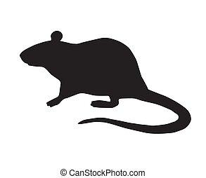 ratto, vettore, appartamento, standing, silhouette, nero