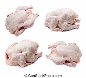 rauwe, chicken, set