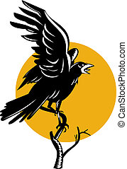 Raven - illustration of a raven perched on a branch