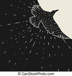 raven., noir, main, voler, fond, dessiné, oiseau, taché d'...