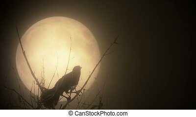 Raven silhouette against a blood moon - Bird shadow on a...