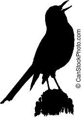 raven vector silhouette