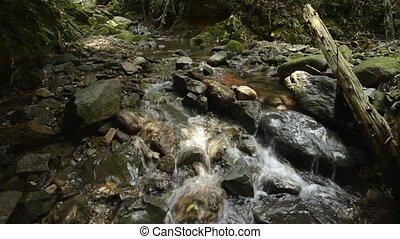 ravin, ruisseau, mince, écoulement