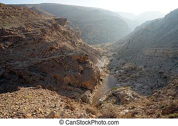 Ravine and mountain in Negev desert, Israel...
