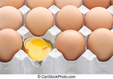 Raw break egg contained carton box on white background.