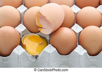Raw break egg eggshell contained carton box on white background.