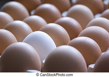 eggs - raw brown eggs and one white in shop