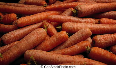 Raw Carrots In Pile