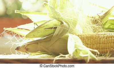 Raw corn cobs with leaves close-up shot