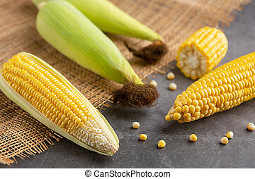 Raw corn on the black cement floor.