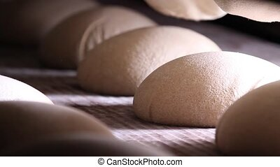 Raw dough bread on a conveyor