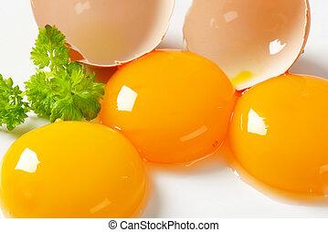 Raw egg yolks - Three fresh egg yolks and empty eggshell