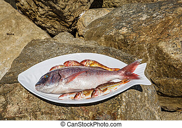 Raw fish on a plate