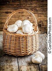 raw fresh mushrooms in  the basket