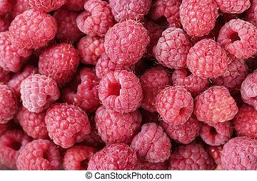 raw fresh raspberries