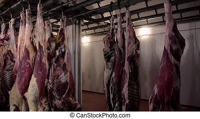 raw meat hanging in a slaughterhouse