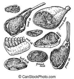 Raw meat set vector drawing. Hand drawn beef steak, pork ham, lamb rib, minced chicken forcemeat.