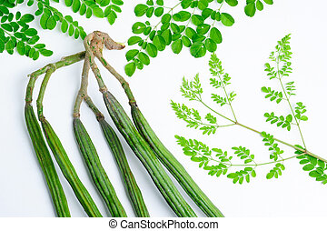 Raw moringa green color