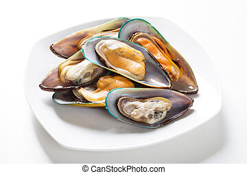 raw mussel on plate