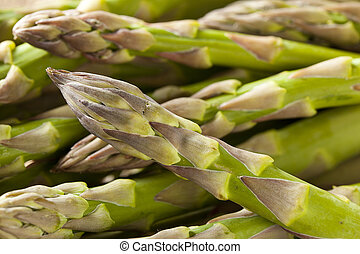 Raw Organic Asparagus Spears ready to be cooked