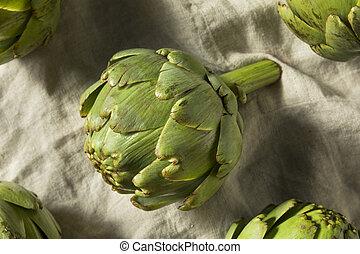 Raw Organic Green Artichokes