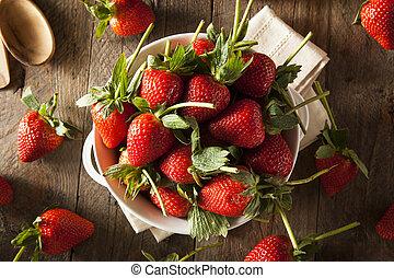 Raw Organic Long Stem Strawberries in a Bowl
