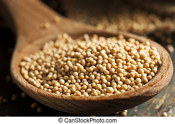 Raw Organic Mustard Seeds in a Spoon