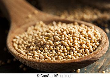 Raw Organic Mustard Seeds in a Spoon