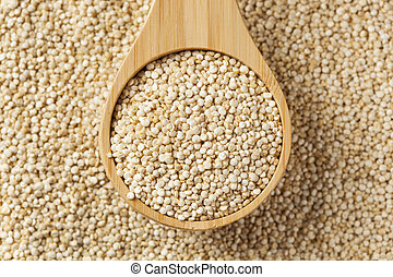 Raw Organic Quinoa Seeds against a background