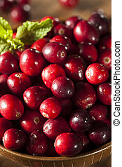 Raw Organic Red Cranberries in a Bowl