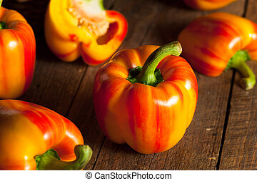 Raw Organic Striped Red Bell Pepper Ready to Cook With