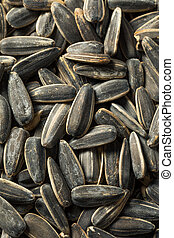 Raw Organic Sunflower Seedsd in a Bowl Ready to Eat
