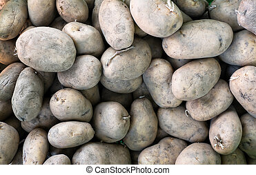 Raw potatoes background