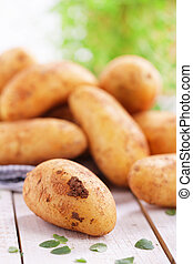 Raw potatoes with dirty clod