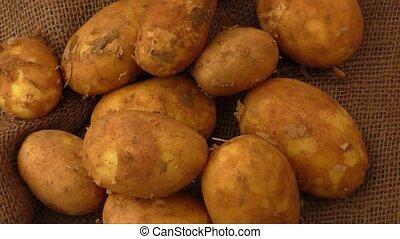Raw potatoes on rustic hessian background