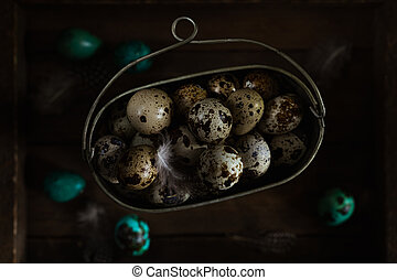 Raw quail eggs in old metal bowl, blue colored eggs on wooden rustic background. Dark Moody Still Life Photography