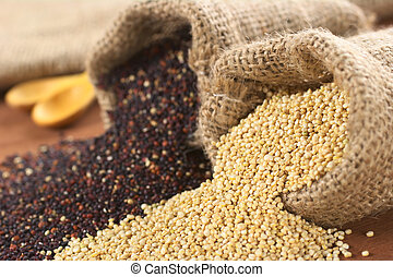 Raw red and white quinoa grains in jute sack on wood. Quinoa...