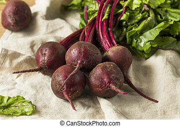 Raw Red Organic Beet Roots